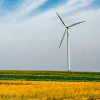 wind-turbine-field-renewable-energy