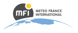 Meteo France International logo