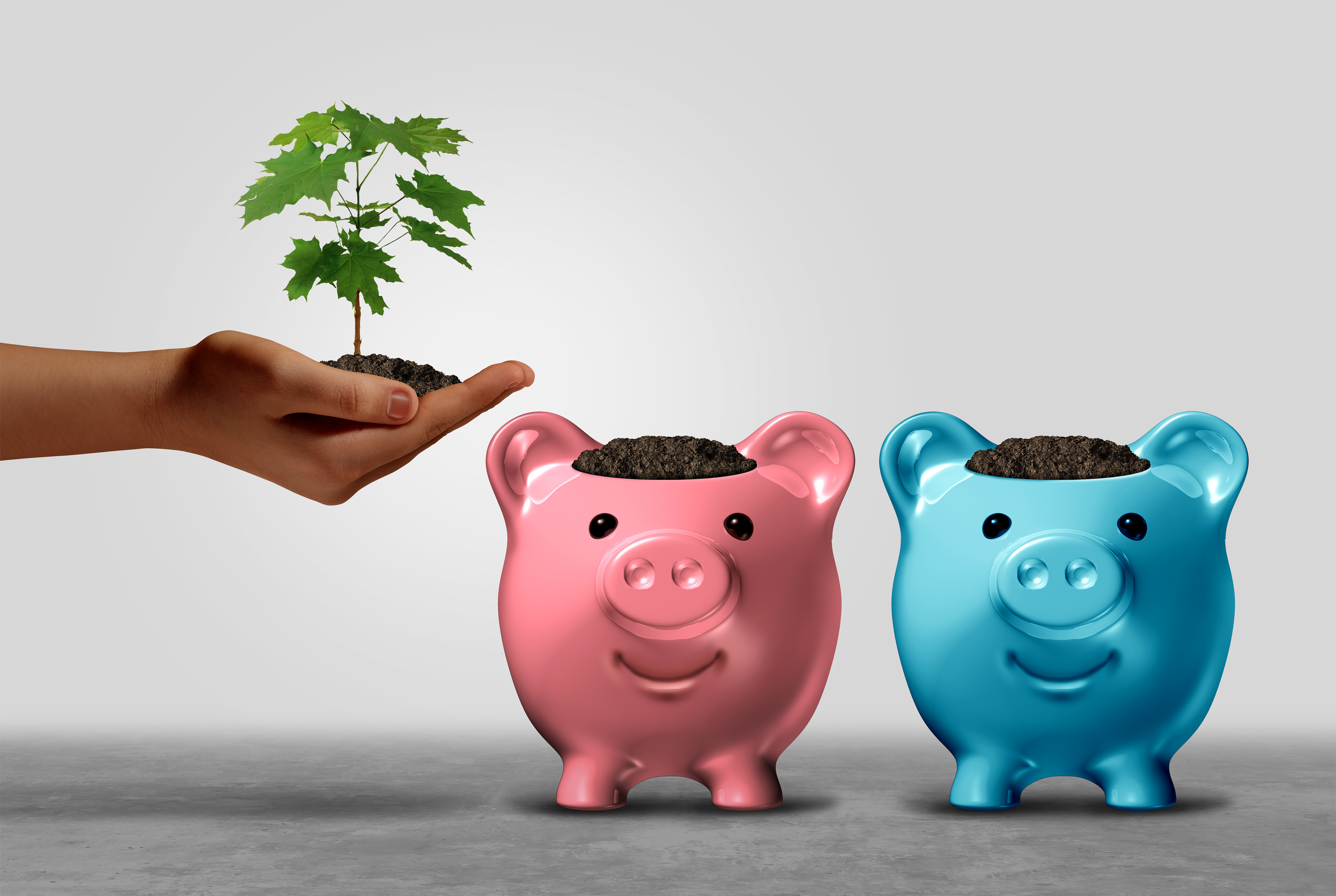 2 piggy banks with a small tree being planted in them