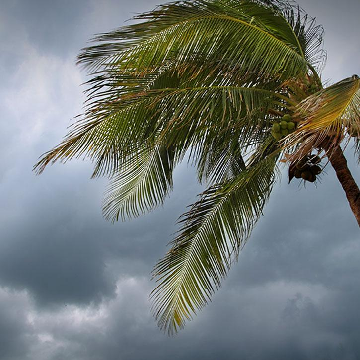 Tropical Cyclones Thumbnail